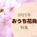 """2021年の花見は家で楽しむ!""""おうち花見""""特集"""